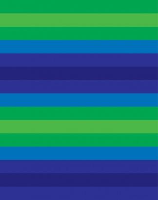 Blue Bold Stripe – 1600
