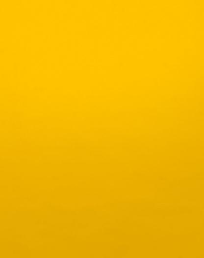 Sunshine Groove – Solid – 1000