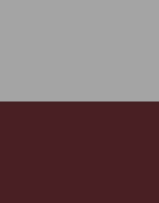 Burgundy/Silver – Reversible – 1236