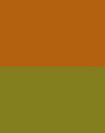 Orange/Lime – Reversible – 9032