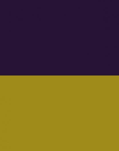 Yellow/Purple – Reversible – 9034